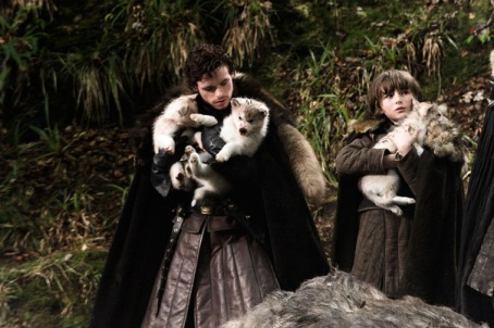 Robb Stark discovers a litter of Direwolf pups