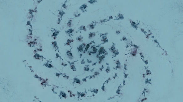Dead horses left by the White Walkers in a spiral configuration that matches the spiral of the Children